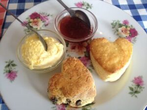 Torquay scones_opt
