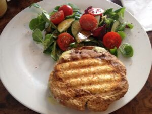 Healthy Cook toasted sandwich_opt