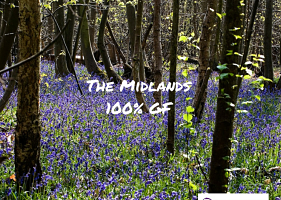UK 100% gluten free – The Midlands
