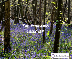 The Midlands_opt